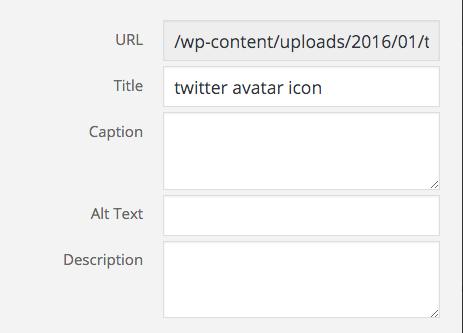 alt_text-example