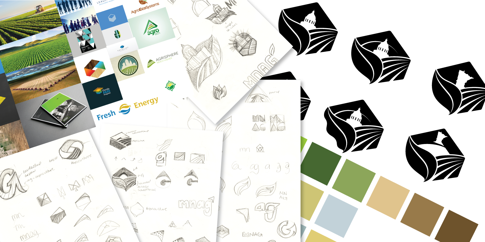 A collage of the moodboard, sketches, digital sketches, and color palette options